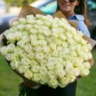 Букет из 101 белой розы № 354