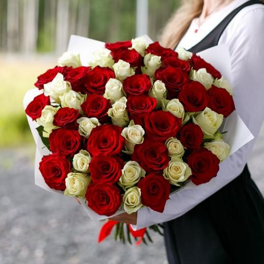 Букет из 51 бело красной розы № 345