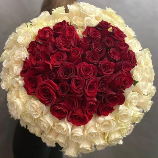 Букет из 101 бело красной розы № 355