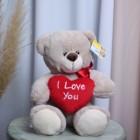 Медведь Валентин